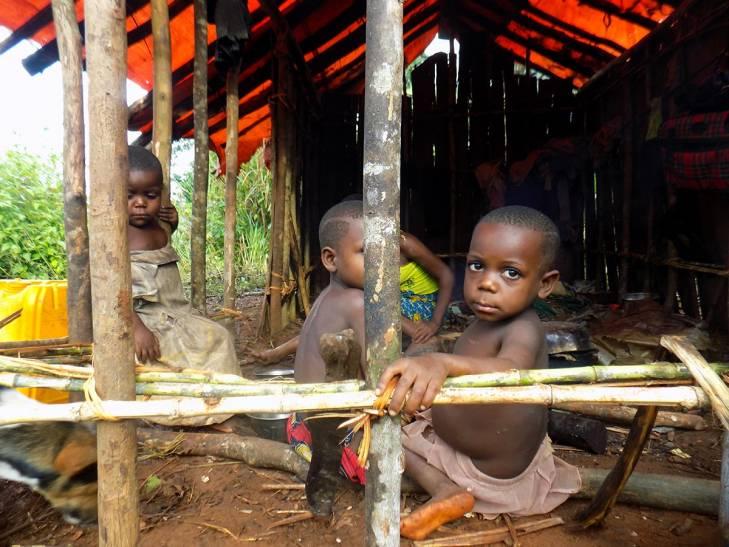 Enfants Pygmées dans le Parc national de Kahuzi-Biega