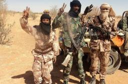 Joint patrols in view for northern Mali