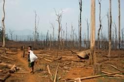 La question de la responsabilité des entreprises et de la justice transitionnelle au Myanmar