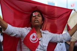 TRANSITIONAL JUSTICE IN TUNISIA – IN BRIEF