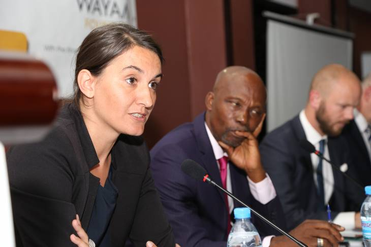 """Afrique: le trafic illégal de ressources naturelles """"nourrit"""" les crimes internationaux"""