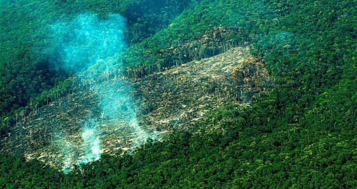 Guerre, gardes forestiers et espoirs de la justice transitionnelle en Colombie