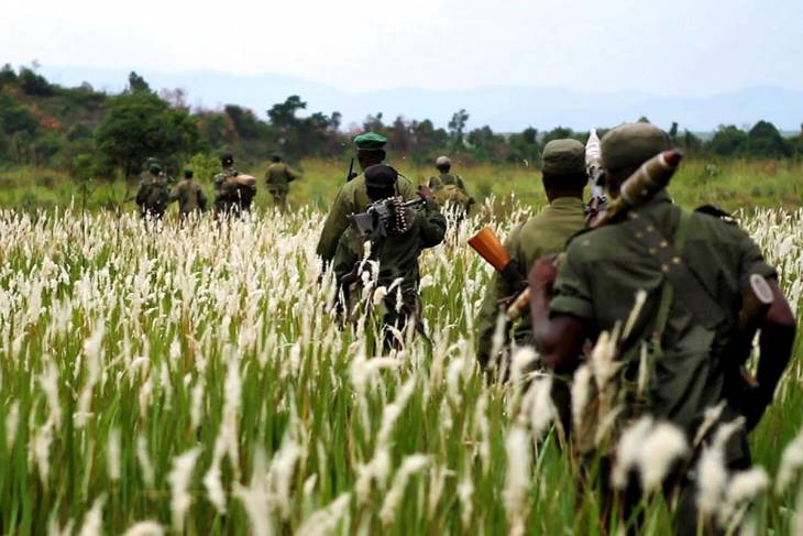 Bled by armed groups, Congo's Virunga Park wants justice