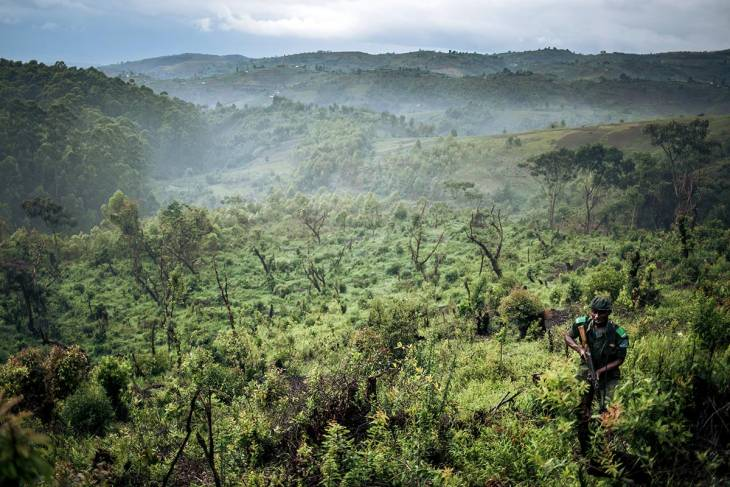 "DRC: Outcry as indigenous people convicted for ""wicked destruction of nature"""