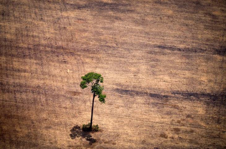 International criminal justice fails to meet the challenge of environmental crimes