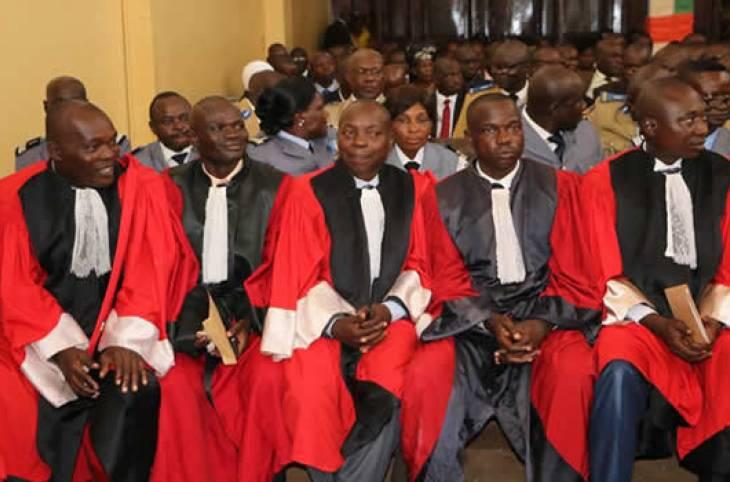 Centrafrique: les avocats aiguisent leurs compétences
