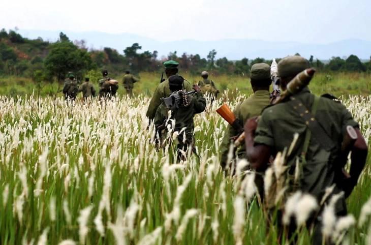 Saigné par les groupes armés, le parc congolais des Virunga réclame justice
