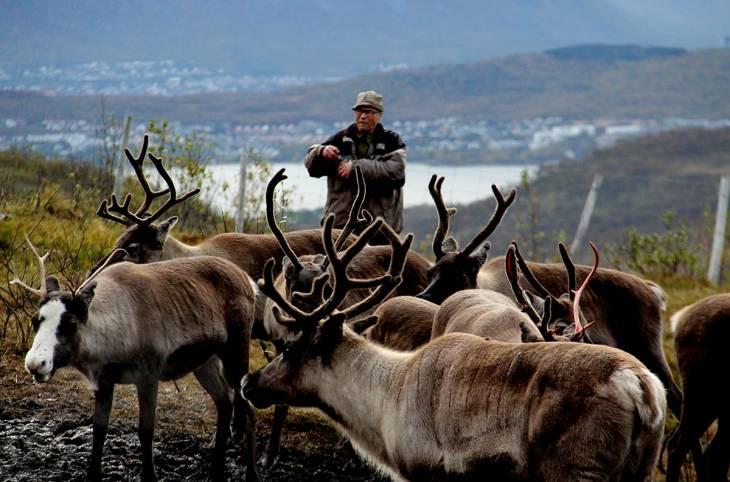 Peuples autochtones : les timides premiers pas de la commission vérité norvégienne