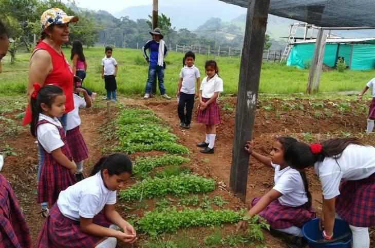 Le Covid-19 éloigne encore plus les réparations en Colombie